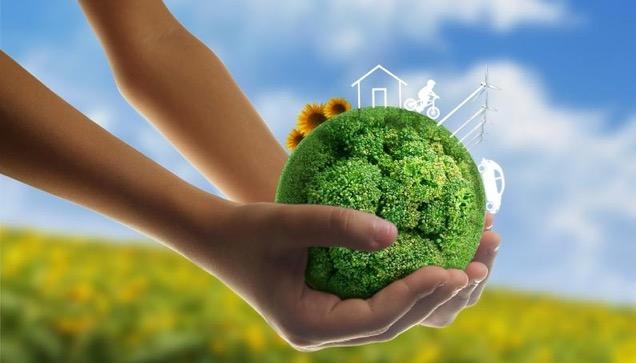 Report on environmental monitoring
