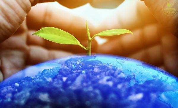 Kế hoạch bảo vệ môi trường cấp Quận (Huyện) gồm những nội dung gì???